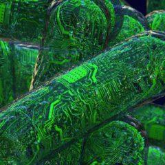 Случайное движение живых клеток станет основной кибербезопасности будущего